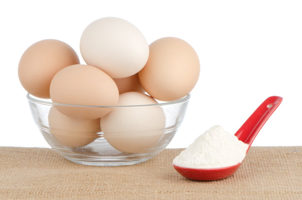 What Is Egg Protein?