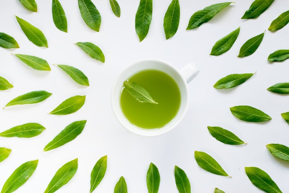 Using Green Tea For Cutting