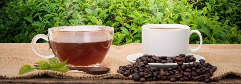 L-theanine and Caffeine; How These Two Nootropics Are a Dream-Team For Your Brain