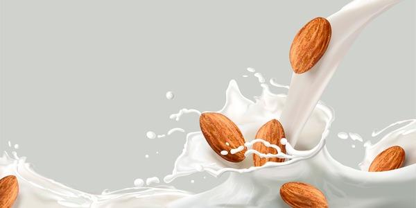 leche de frutos secos
