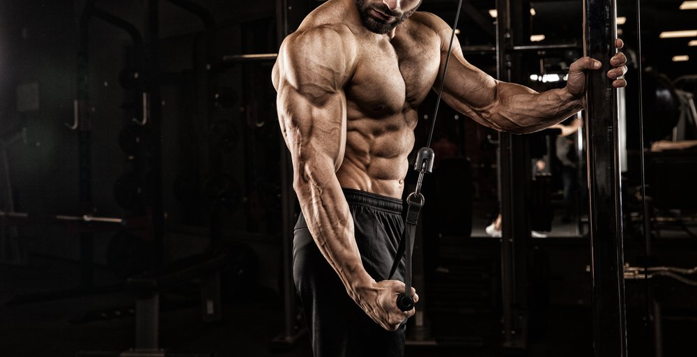 Utilisation de TCM en musculation